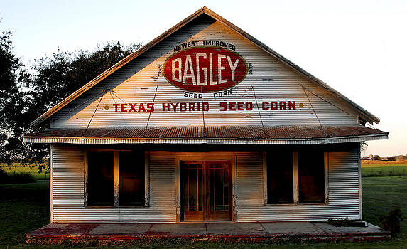Bagley Seed Corn by Will Gallagher
