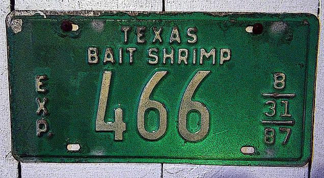 Tom DiFrancesca - Bait Shrimp 466