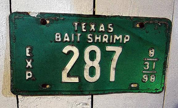 Tom DiFrancesca - Bait Shrimp Green Graphic