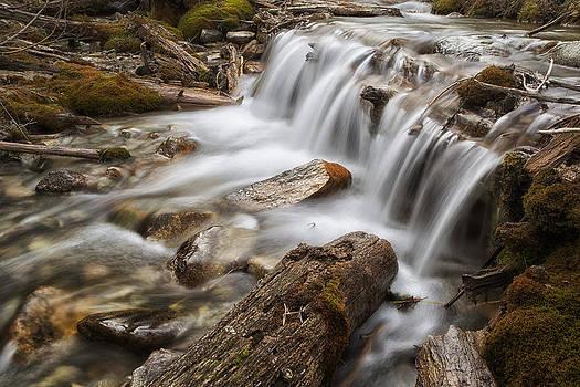 Baker Creek by Lisa Kidd
