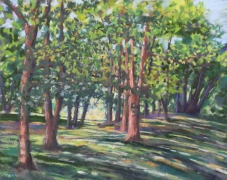 Baker Creek Park by Regina Calton Burchett