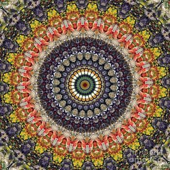 Balancing Loop by Denise Nickey