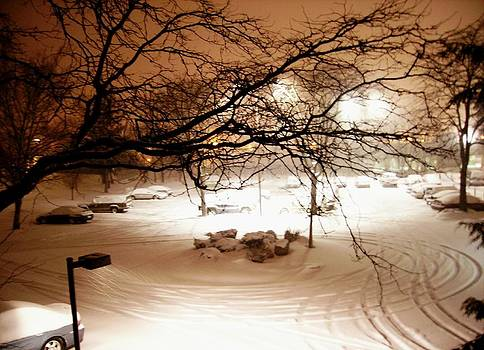 Balcony View of Stormy Winter's Night by Connie Ann LaPointe