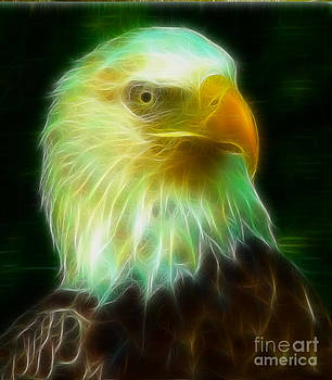 Bald Eagle 54 Fractal by Gary Gingrich Galleries