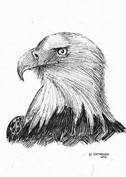 Bald Eagle by Al Intindola