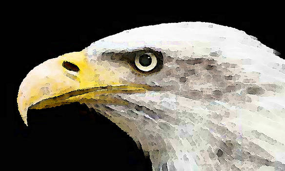 Bald Eagle by Sharon Cummings by William Patrick