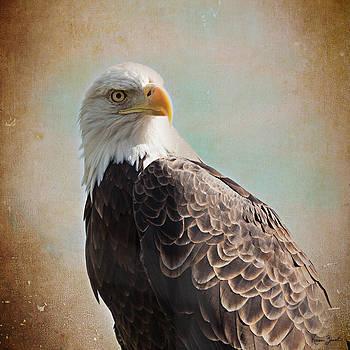 Bald Eagle by Karen Varnas