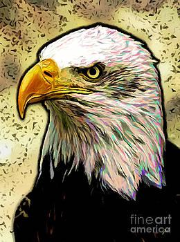 Bald Eagle by Ze  Di