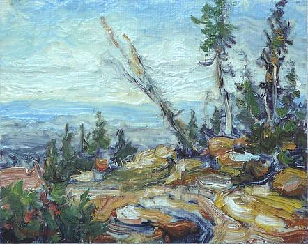 Bald Mountain Vista by Lynn T Bright