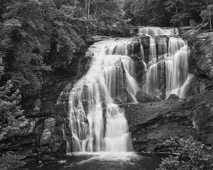 Bald River Falls - Black and White by Brian Young