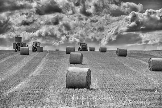 Thomas Schreiter - bales of straw