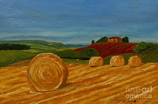 Field Of Golden Hay by Anthony Dunphy