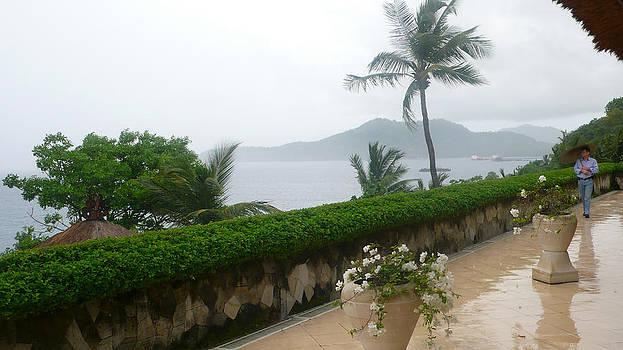 Bali in th rain by Jack Edson Adams