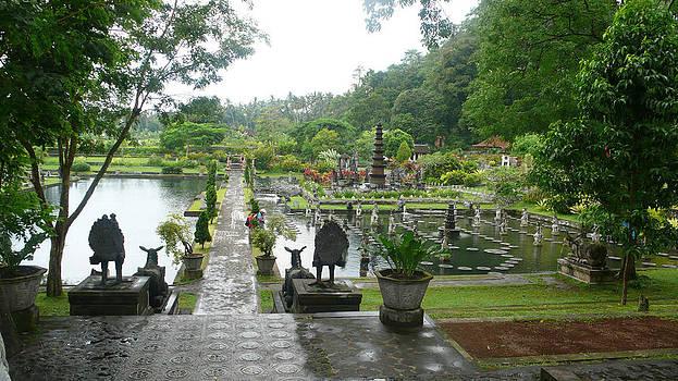 Bali Lake side by Jack Edson Adams