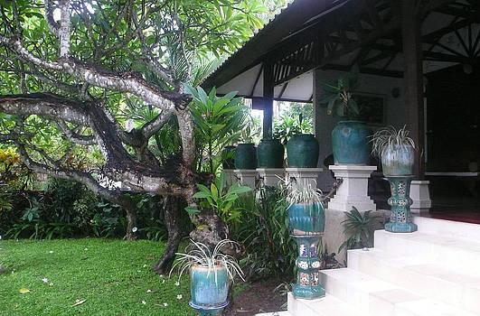 Bali Villa by Jack Adams