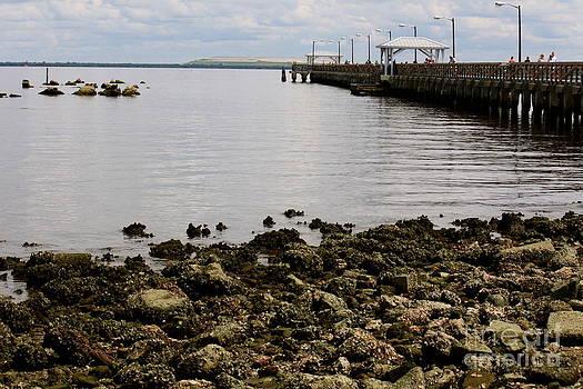 Danielle Groenen - Ballast Point Pier