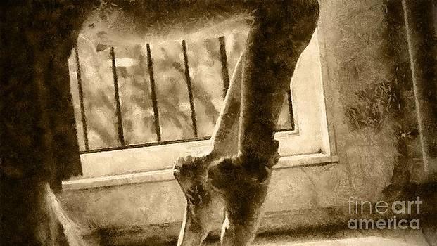 Ballet Stretch by Yanni Theodorou