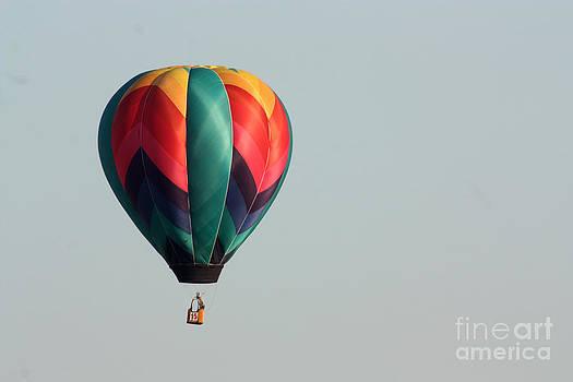 Gary Gingrich Galleries - Balloon-0026-13
