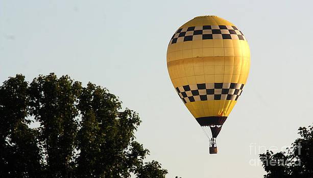 Gary Gingrich Galleries - Balloon-0121-13