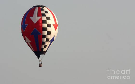 Gary Gingrich Galleries - Balloon-0220-13