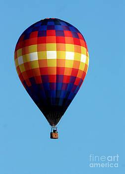 Gary Gingrich Galleries - Balloon-0326-13