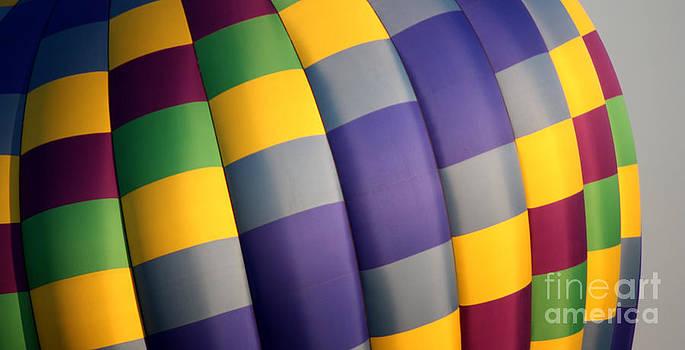 Gary Gingrich Galleries - Balloon-9870-13