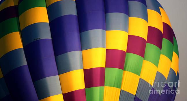 Gary Gingrich Galleries - Balloon-9877-13