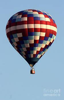 Gary Gingrich Galleries - Balloon-9916-13