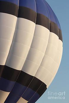 Gary Gingrich Galleries - Balloon-BWB-7378
