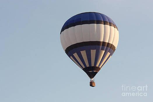 Gary Gingrich Galleries - Balloon-BWB-7399