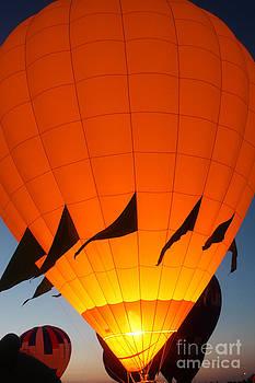 Gary Gingrich Galleries - Balloon-GlowYellow-7689