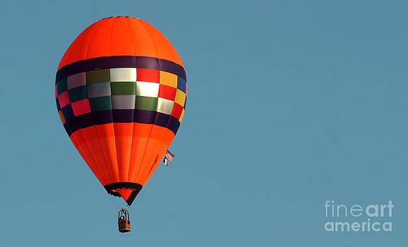 Gary Gingrich Galleries - Balloon-Orange-0019-13