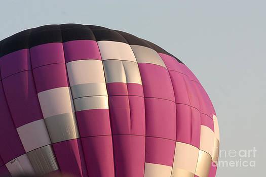 Gary Gingrich Galleries - Balloon-Purple-7457