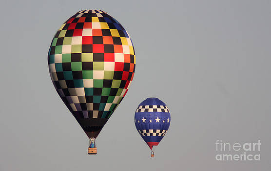 Gary Gingrich Galleries - Balloons-0384-13