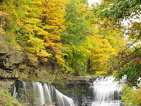 Simply  Photos - Balls Falls in Autumn Color