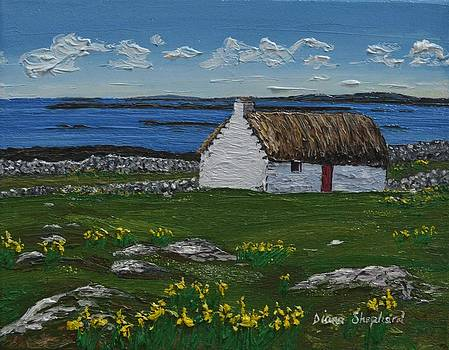 Ballyconneelly Cottage Connemara Ireland by Diana Shephard