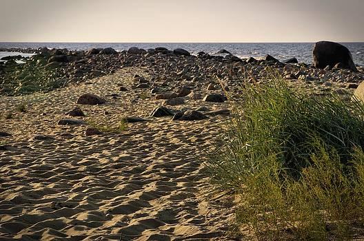 Baltic Sea shore in Hiiumaa by Sergei Zinovjev