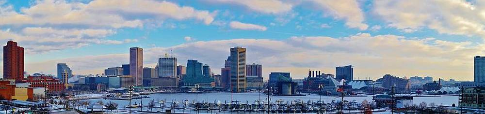 Baltimore Frozen Harbor Skyline by William Bartholomew
