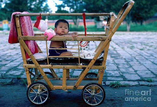 Bamboo Baby Buggy by Eva Kato