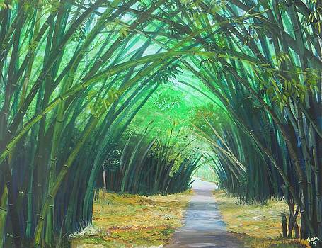 Bamboo Cathedral by Samantha Rochard