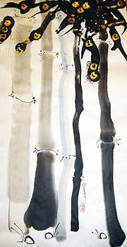 Casey Shannon - Bamboo Fantasy