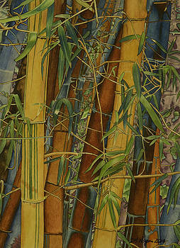 Bamboo Forest by DK Nagano