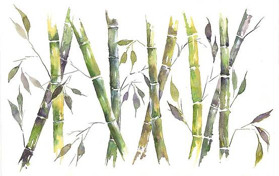 Bamboo by Jitka Krause