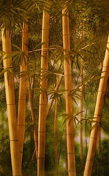 Bamboo  by Paul ONeill