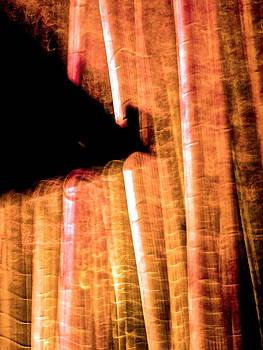 Larry Knipfing - Bamboo Spirit Dance - 8