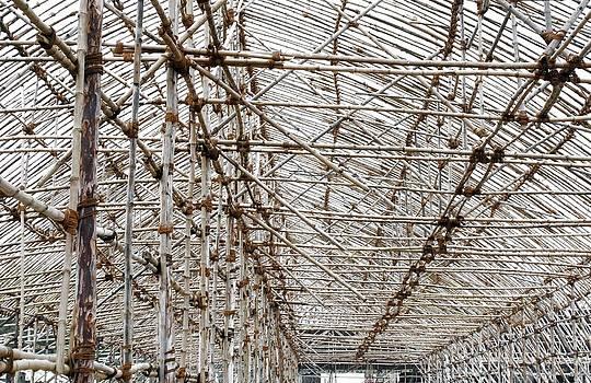 Sumit Mehndiratta - Bamboo structure 3
