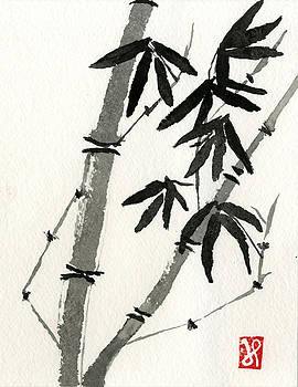 Bamboo Study 3 by Jamie Seul