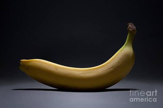 Banana In Limbo by Dan Holm