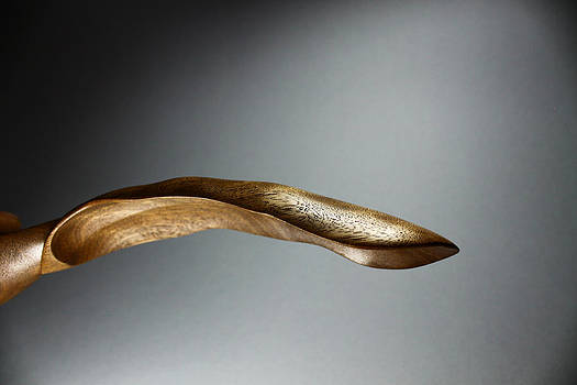 Banana Leaf Spoon 2 by Abram Barrett