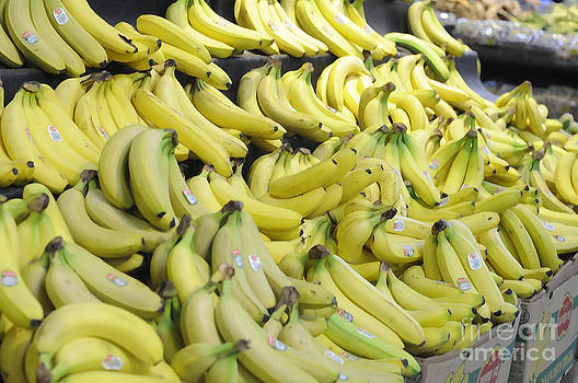 Bananas by Andres LaBrada